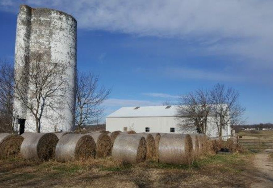 7631 East Farm Rd 182 Rogersville, MO 65742 - Photo 5
