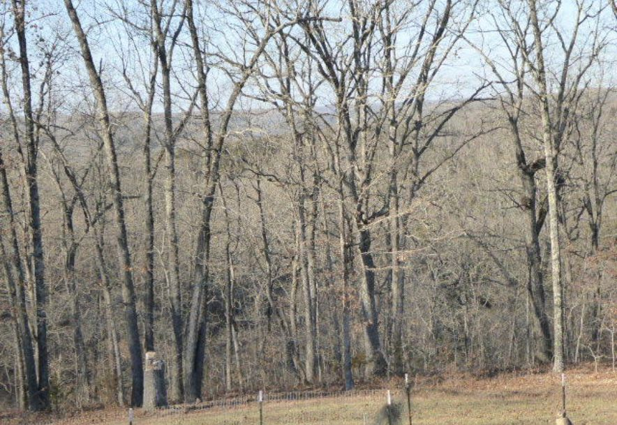 699 State Highway A Chestnutridge, MO 65630 - Photo 71
