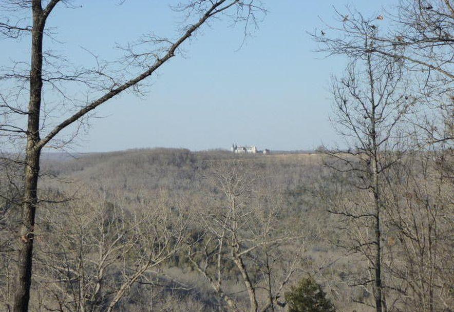 699 State Highway A Chestnutridge, MO 65630 - Photo 85