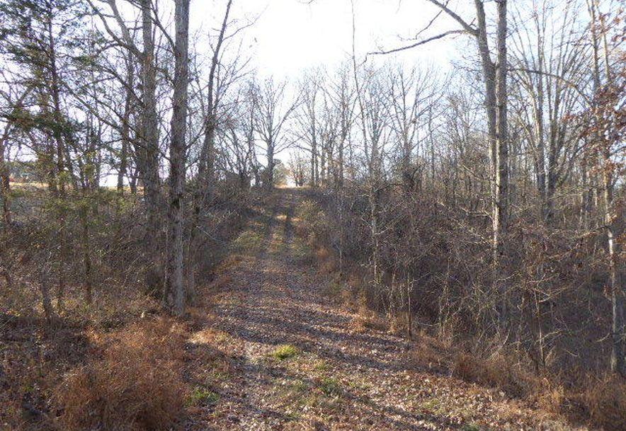 699 State Highway A Chestnutridge, MO 65630 - Photo 97
