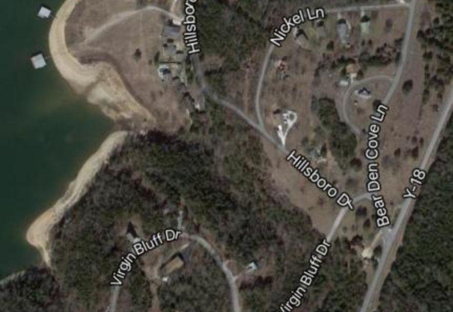 21 Hillboro Drive Galena, MO 65656 - Photo 1