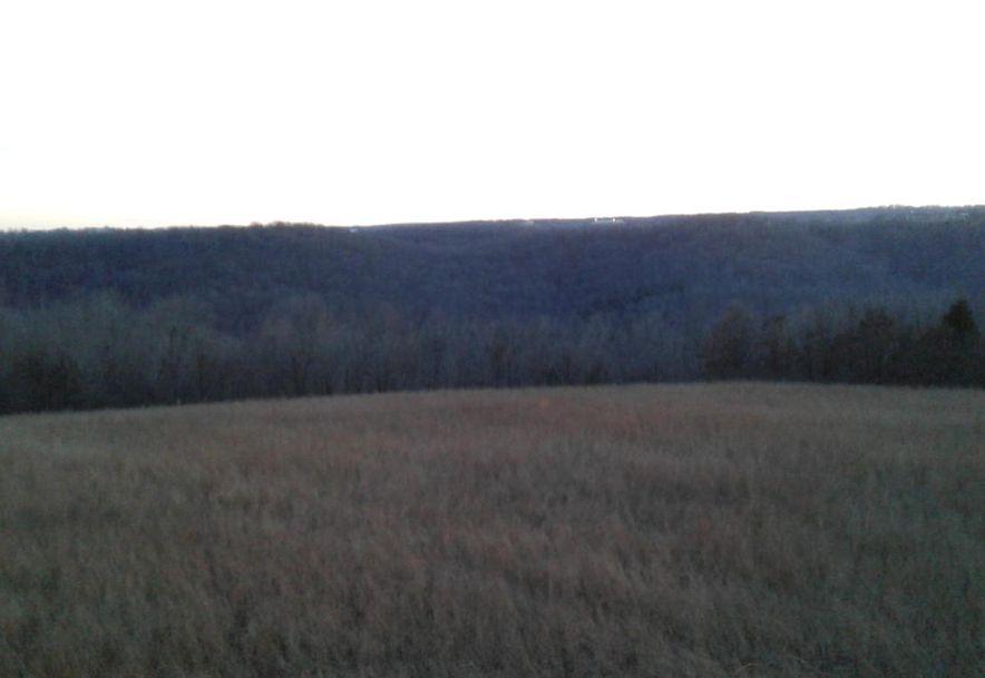 Tbd Edison Lane Reeds Spring, MO 65737 - Photo 1