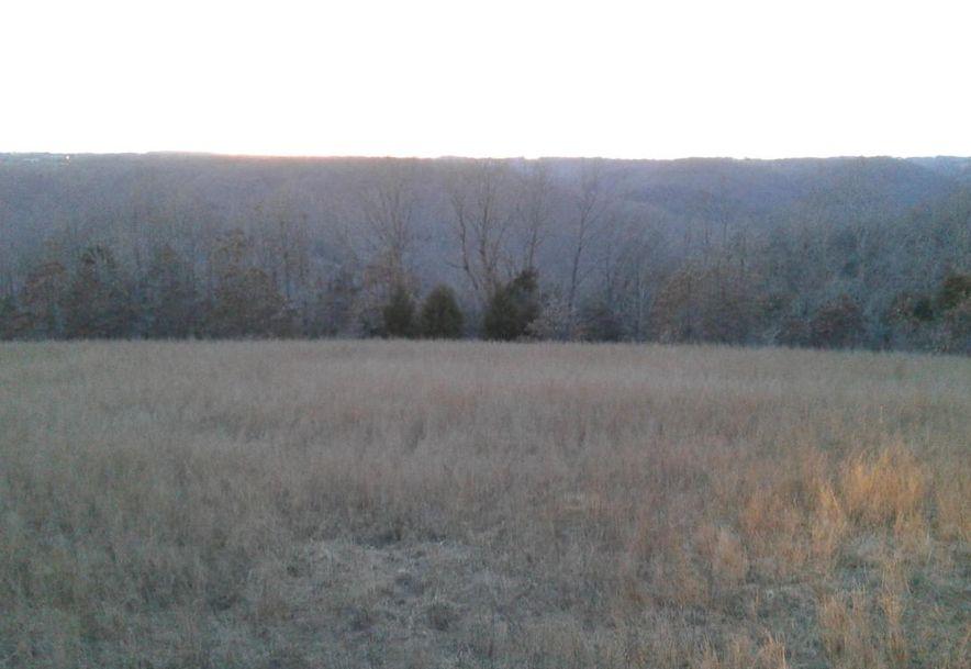Tbd Edison Lane Reeds Spring, MO 65737 - Photo 2