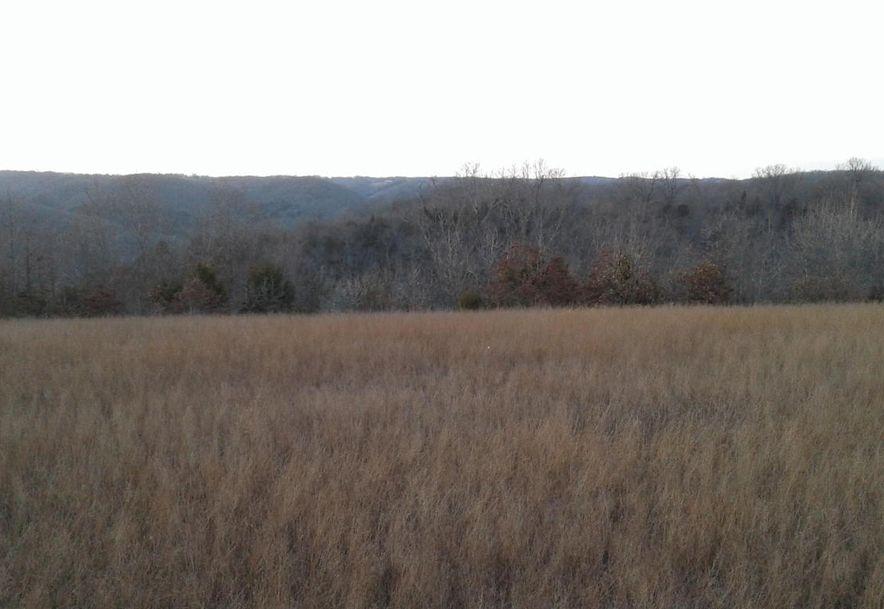 Tbd Edison Lane Reeds Spring, MO 65737 - Photo 12