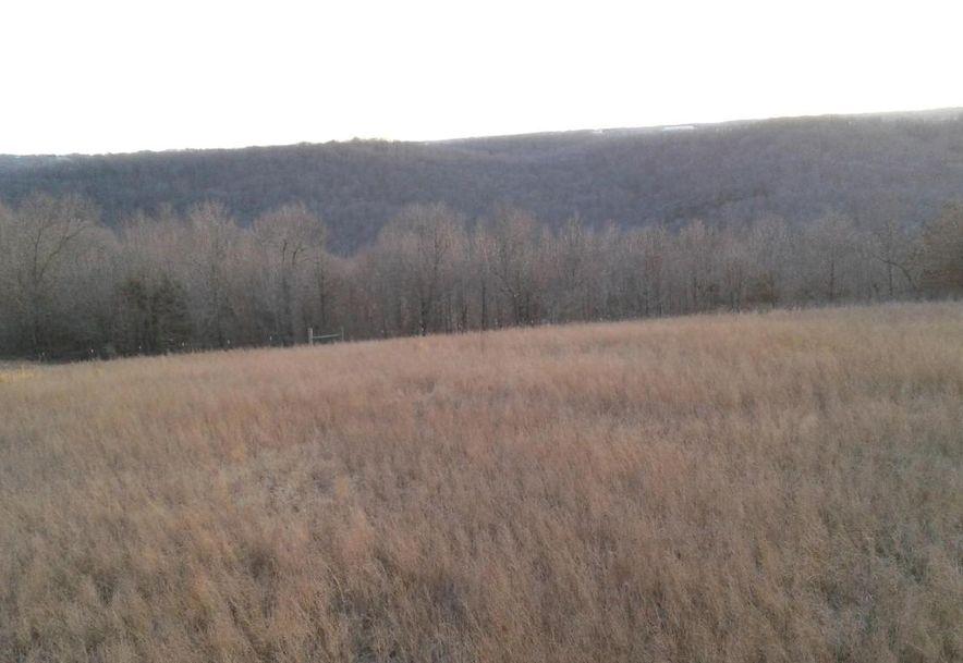 Tbd Edison Lane Reeds Spring, MO 65737 - Photo 3