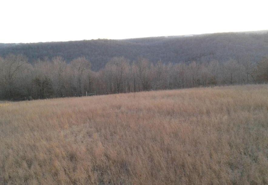 Tbd Edison Lane Reeds Spring, MO 65737 - Photo 5
