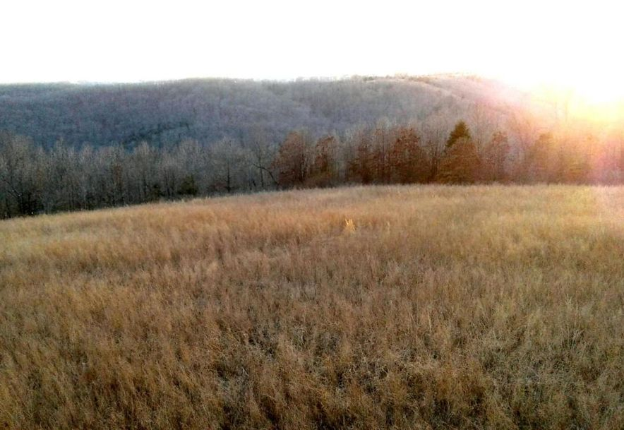 Tbd Edison Lane Reeds Spring, MO 65737 - Photo 6