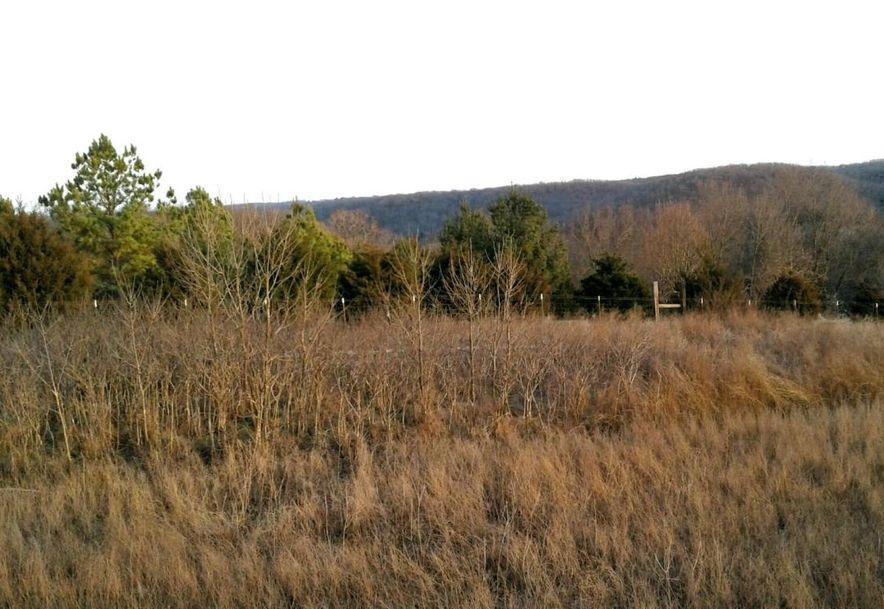Tbd Edison Lane Reeds Spring, MO 65737 - Photo 7