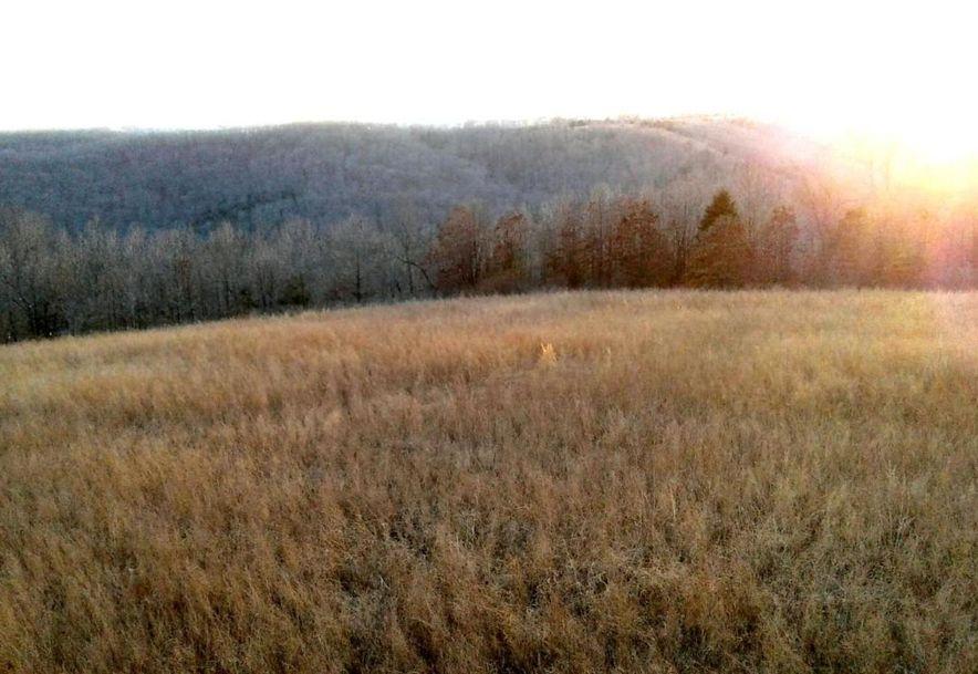 Tbd Edison Lane Reeds Spring, MO 65737 - Photo 9