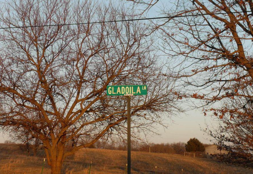872 Mt Carmel Road Clever, MO 65631 - Photo 44