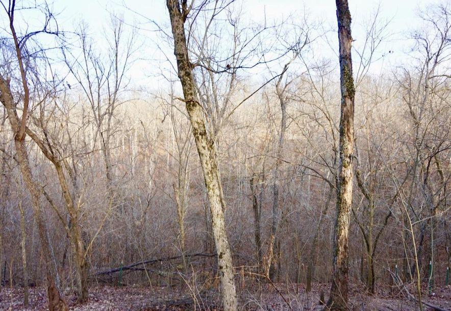 555 Rocky Acres Lane Highlandville, MO 65669 - Photo 39