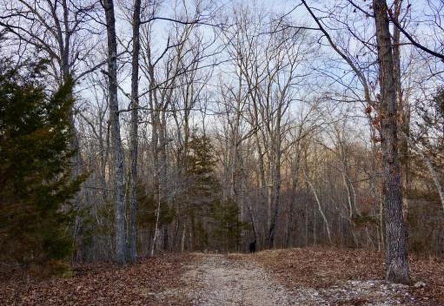 555 Rocky Acres Lane Highlandville, MO 65669 - Photo 42