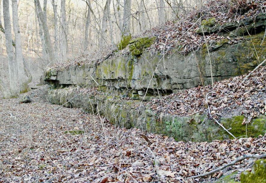 555 Rocky Acres Lane Highlandville, MO 65669 - Photo 60