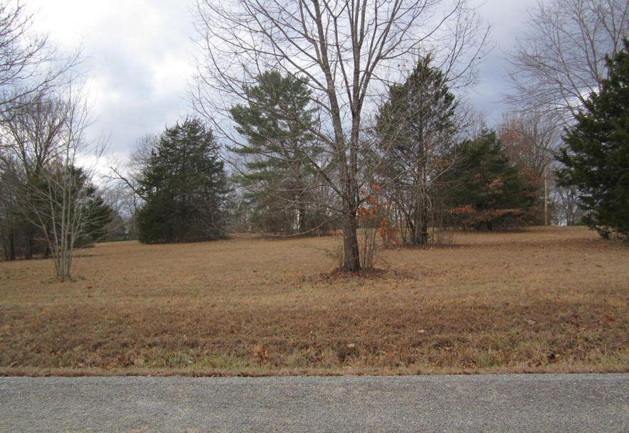 0 High Meadow Drive Shell Knob, MO 65747 - Photo 2