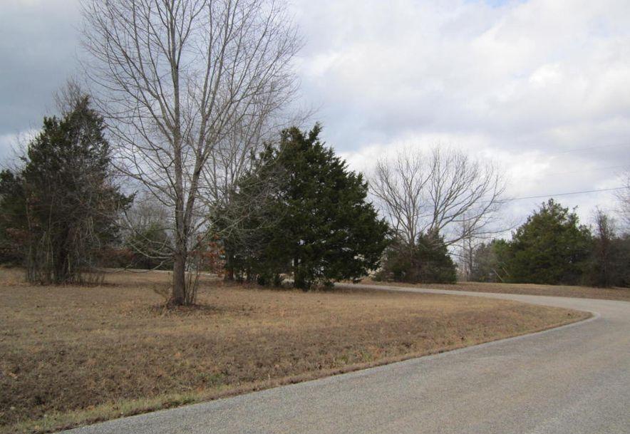0 High Meadow Drive Shell Knob, MO 65747 - Photo 3