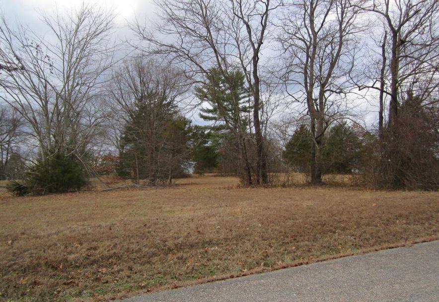 0 High Meadow Drive Shell Knob, MO 65747 - Photo 4