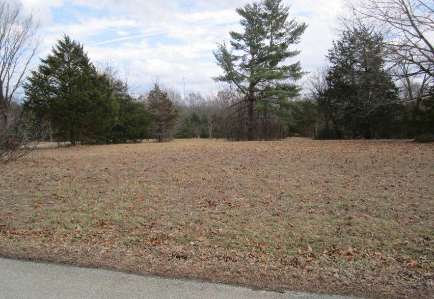 0 High Meadow Drive Shell Knob, MO 65747 - Photo 7