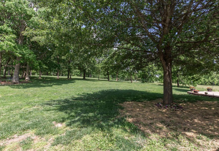 6351 Golf Lane Willard, MO 65781 - Photo 66