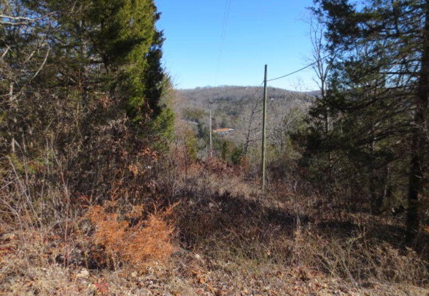 16 Serenity Lane Galena, MO 65656 - Photo 7