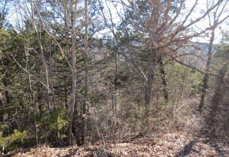 16 Serenity Lane Galena, MO 65656 - Photo 6