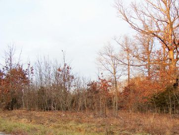 Lot 9 Misty Mountain Drive Bruner, MO 65620 - Image 1