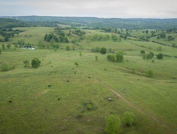 1436 County Road 137 Wasola, MO 65773 - Image 1