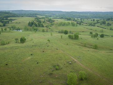 1436 County Road 137 Wasola, MO 65773 - Image 1