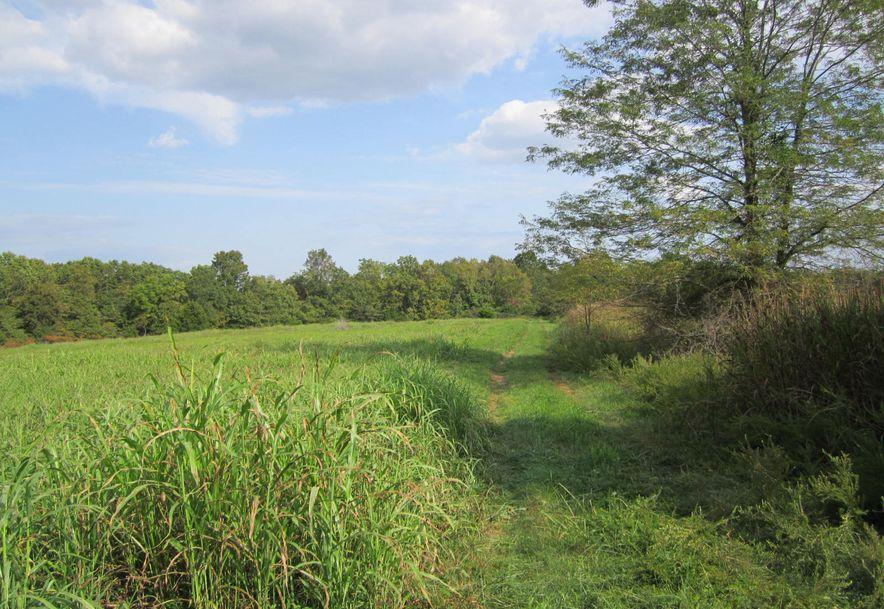 Lot 1 Hidden Valley Estates Clever, MO 65631 - Photo 17