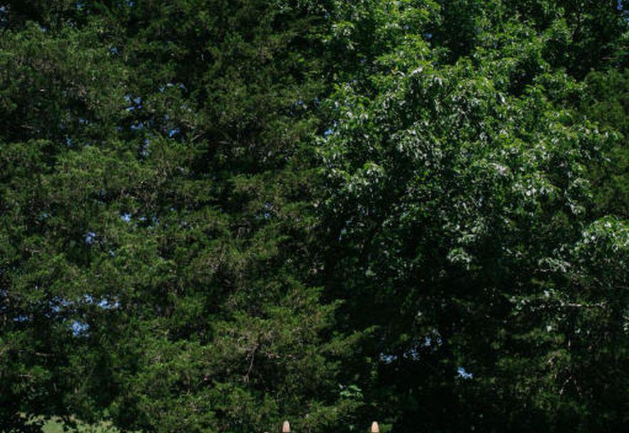 161 Appaloosa Trail Saddlebrooke, MO 65630 - Photo 19