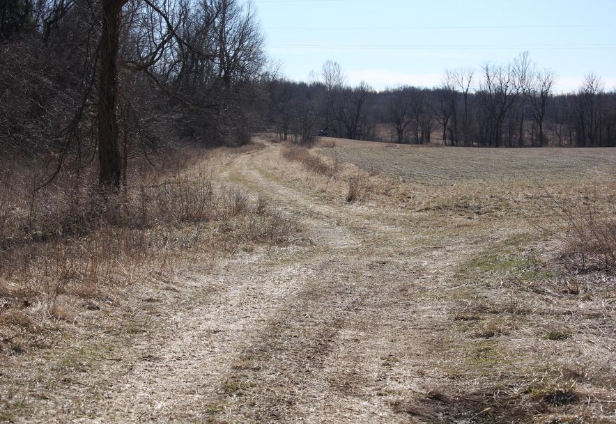 0 West State Hwy 174 Marionville, MO 65705 - Photo 21