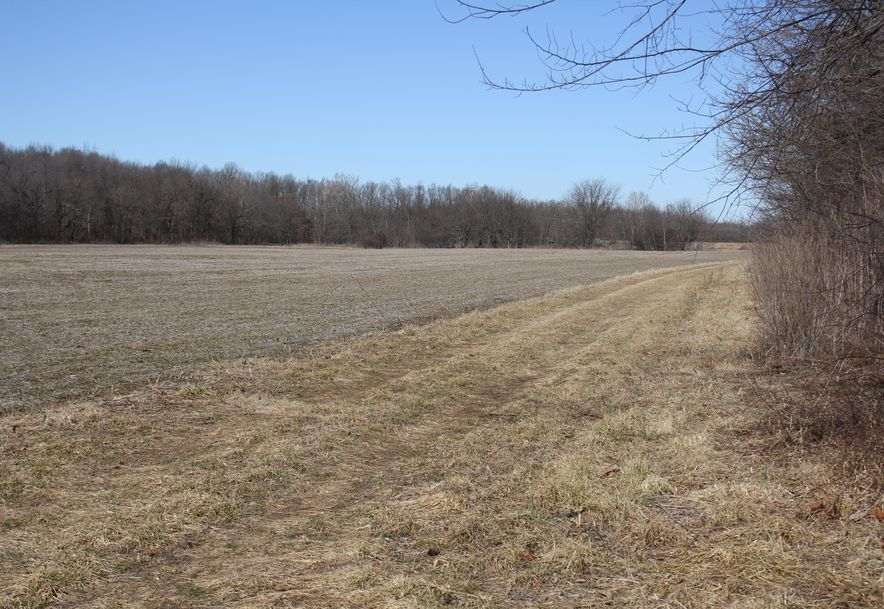 0 West State Hwy 174 Marionville, MO 65705 - Photo 5