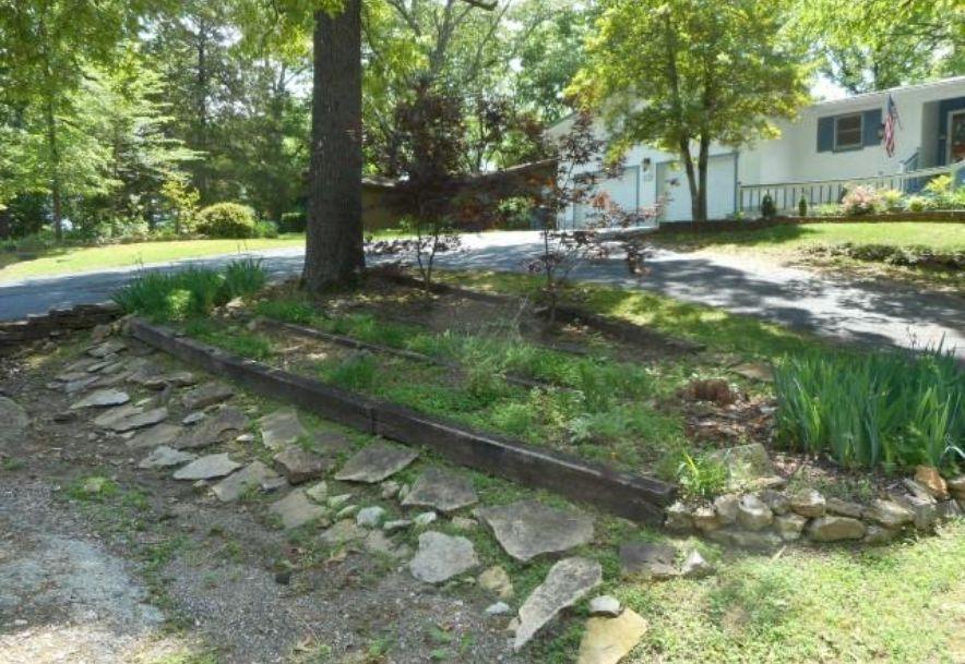 172 Vin Villa Forsyth, MO 65653 - Photo 4