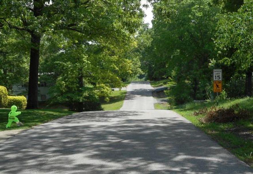172 Vin Villa Forsyth, MO 65653 - Photo 10