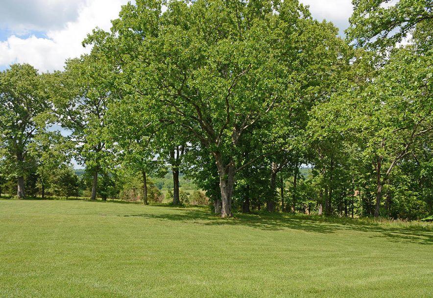 1751 East Cottage Boulevard Ozark, MO 65721 - Photo 61