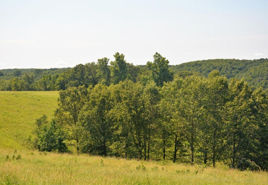 27141 State Hwy 413 Galena, MO 65656 - Photo 44