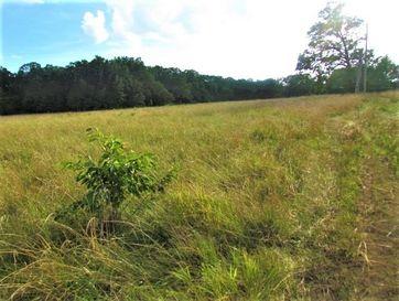 0 Bluestem Road Marshfield, MO 65706 - Image 1