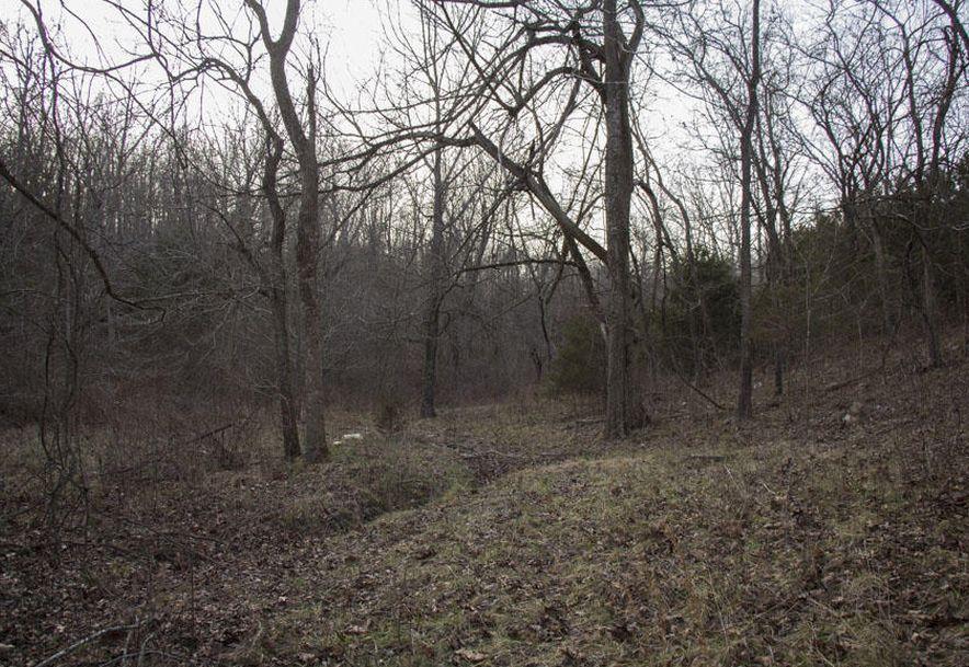 325 Choctaw Road Fordland, MO 65652 - Photo 4