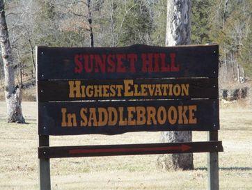 Tbd Sunset Drive Saddlebrooke, MO 65630 - Image 1