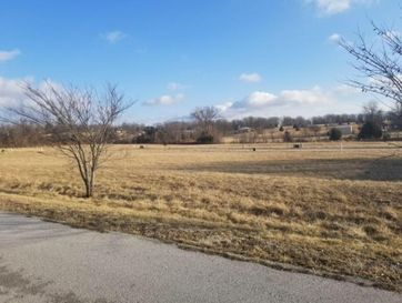 Lot 21 Commerce Road Marshfield, MO 65706 - Image