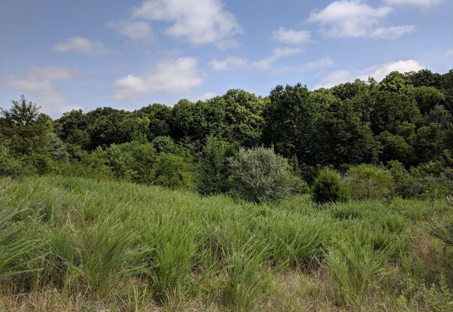 1345 West Peyton Place Nixa, MO 65714 - Photo 5