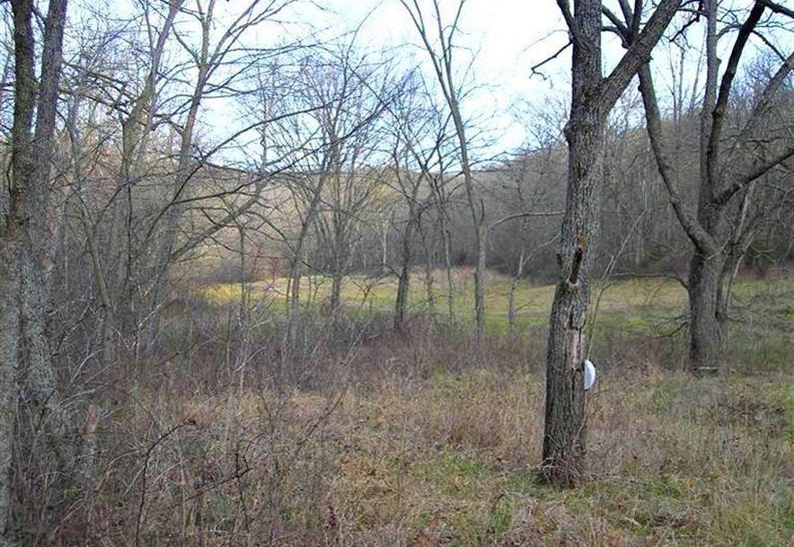 000 County Rd 14-533 Ava, MO 65608 - Photo 16