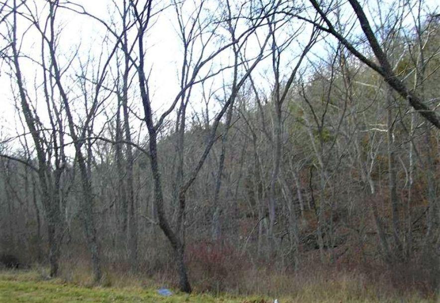 000 County Rd 14-533 Ava, MO 65608 - Photo 19