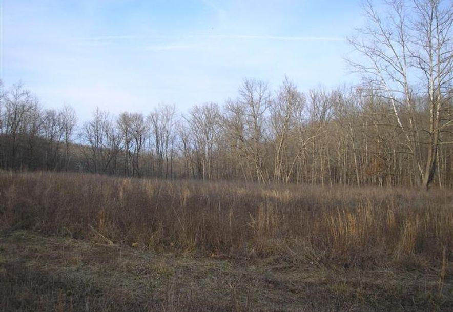 000 County Rd 14-533 Ava, MO 65608 - Photo 30