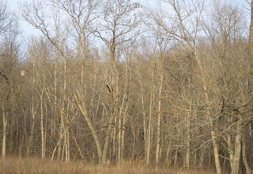 000 County Rd 14-533 Ava, MO 65608 - Photo 31