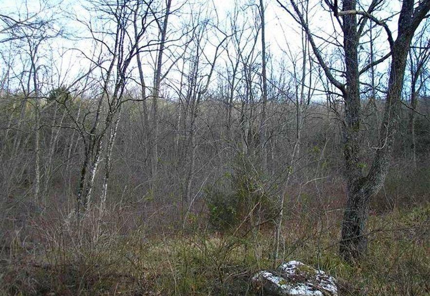 000 County Rd 14-533 Ava, MO 65608 - Photo 6