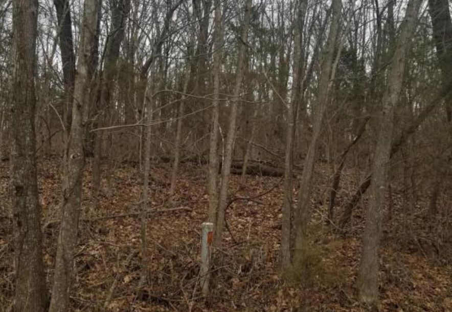 1720 Rabbit Run Nixa, MO 65714 - Photo 1