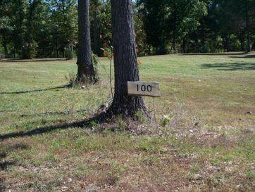 Lots Lots 100-101 Seven Pines Drive Saddlebrooke, MO 65630 - Image 1