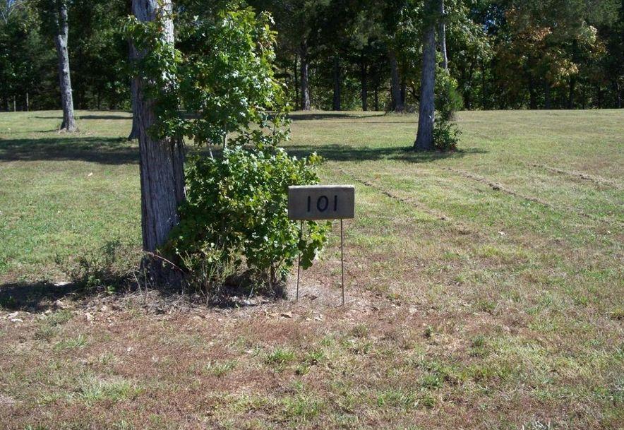 Lots Lots 100-101 Seven Pines Drive Saddlebrooke, MO 65630 - Photo 4