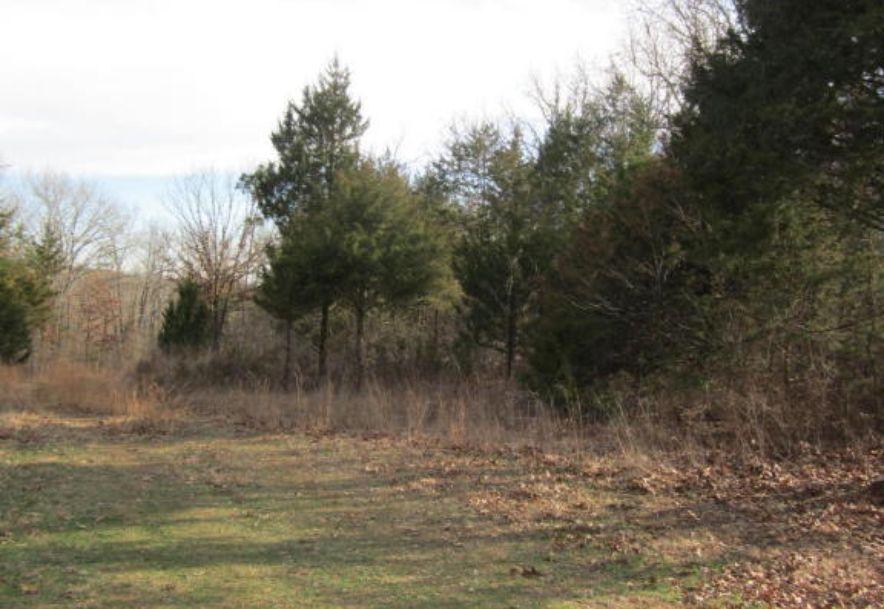 11371 North State Highway 125 Bradleyville, MO 65614 - Photo 32