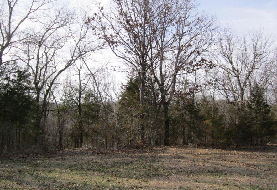 11371 North State Highway 125 Bradleyville, MO 65614 - Photo 36